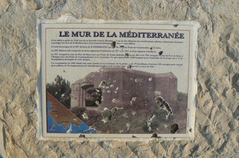 Rhl 044, Les Laurons (Martigues, 13) P1030416