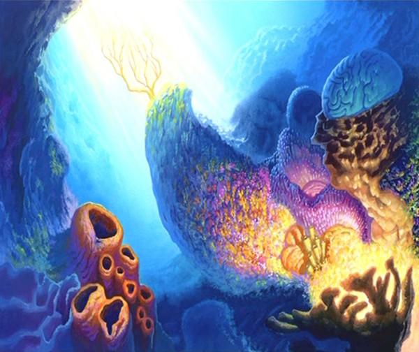 Le Monde de Nemo [Pixar - 2003] Pdvd_104