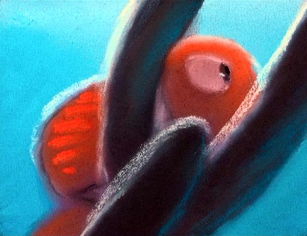 Le Monde de Nemo [Pixar - 2003] Pdvd_109