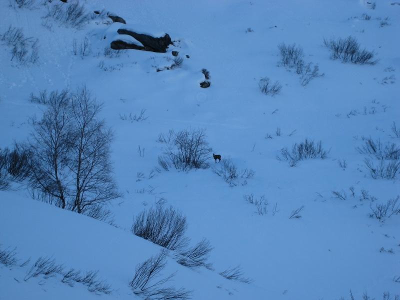 Un hiver à Pralognan 76-mon10