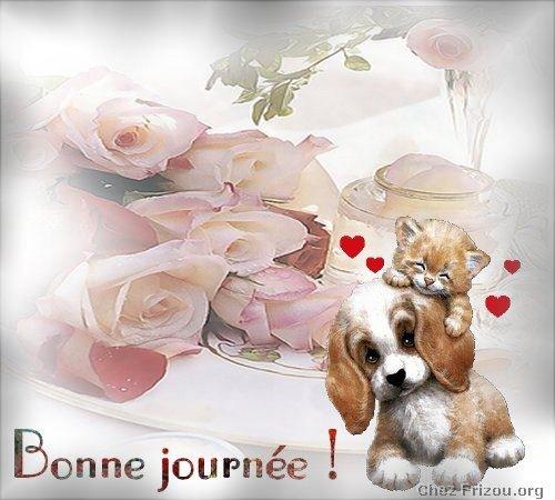 citation image Bonne_11