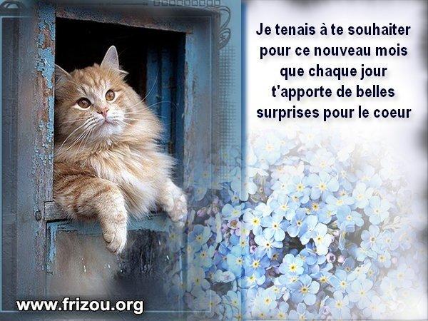 citation image Je_ten10