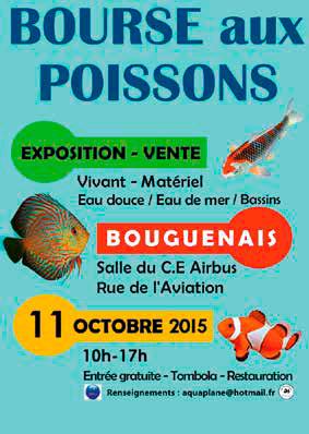 Bourse de Nantes (Bouguenais) le 11 octobre 2015 Bougue10