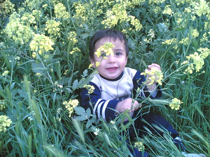 محمد صادق 98758810