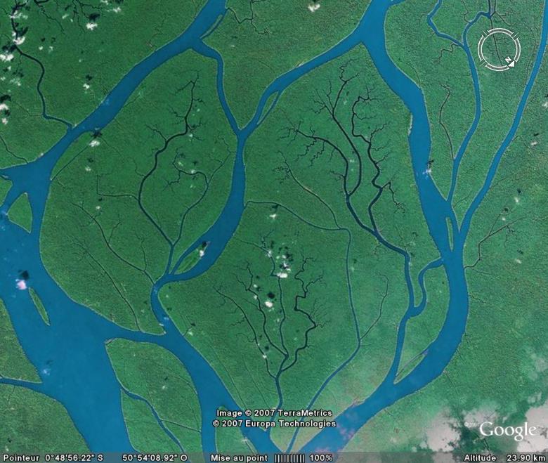 Delta de l'Amazone, Parà - Brésil Amazon10