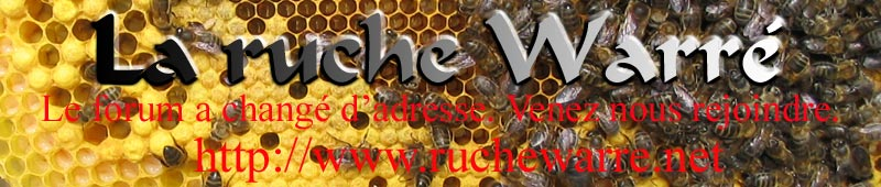 la ruche warre