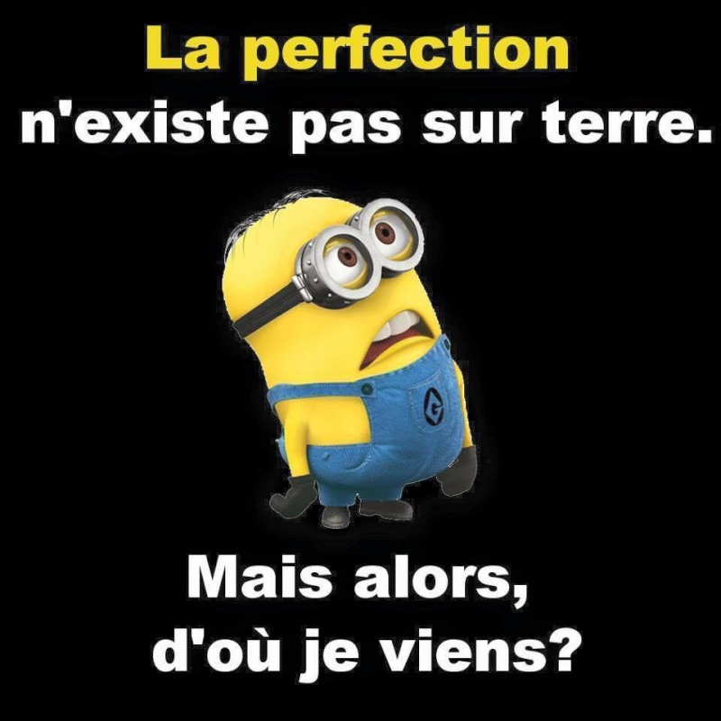 humour - Page 37 10156010
