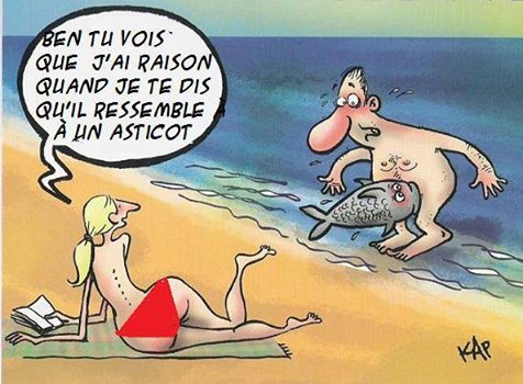 humour - Page 38 11224811