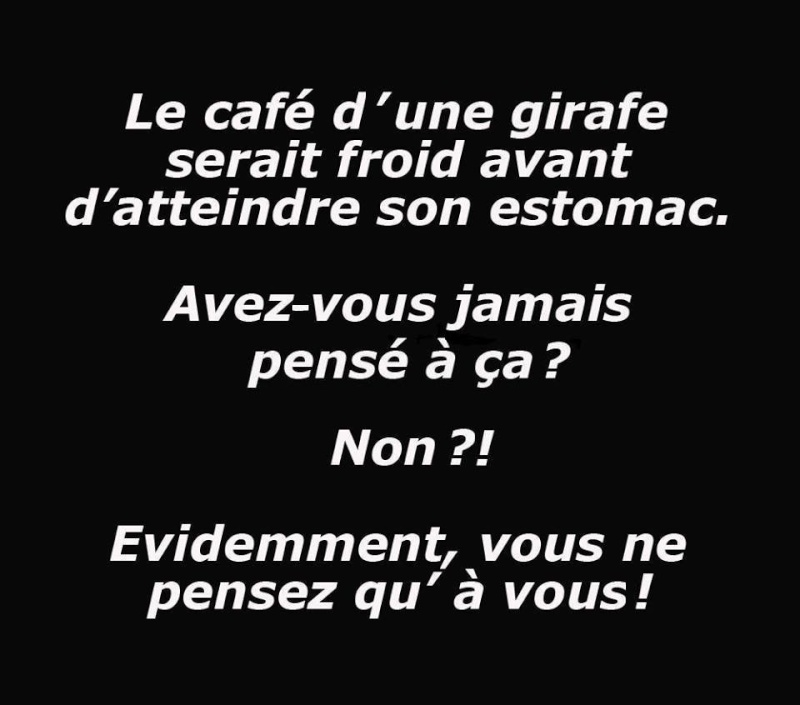 humour - Page 37 12191011