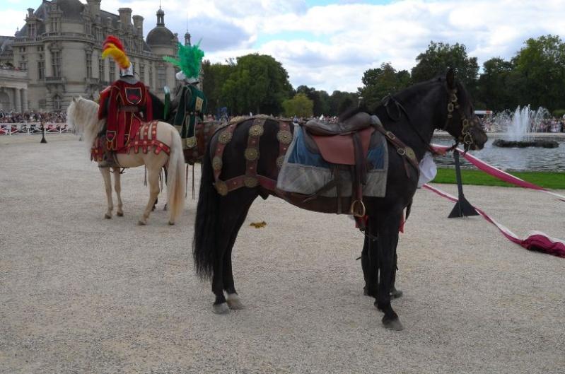 Chantilly Arts & Elégance 2015 L1002210