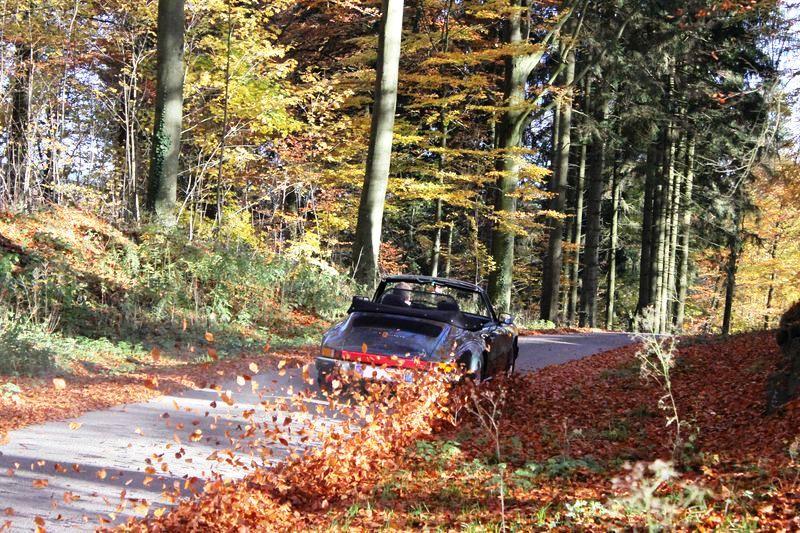 Porsche en automne - Page 4 Plaque10