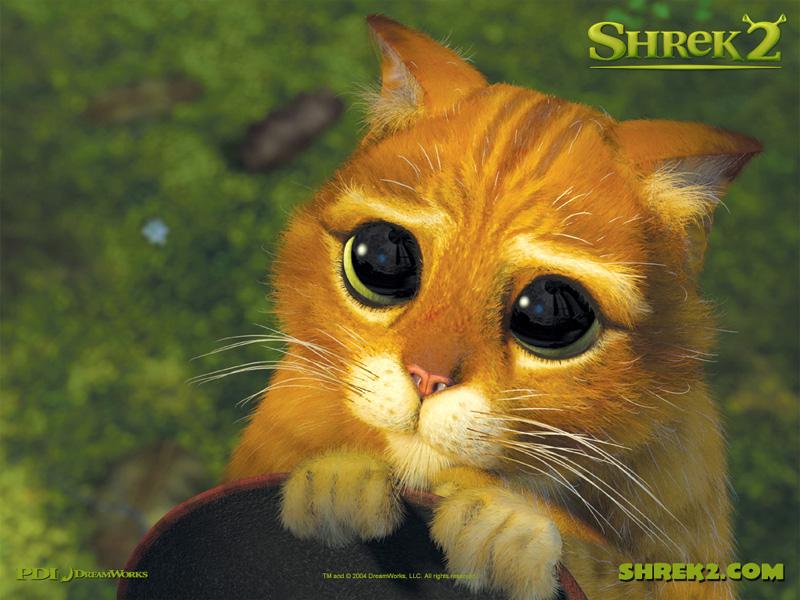 igribouille, c'est pas ma bouille ! Shrek_10