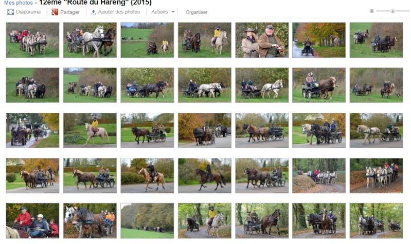 """7 et 8 Novembre 2015 - Restitution de 12ème édition de """"La route du Hareng"""" avec la vidéo et des photos ! Image_10"""
