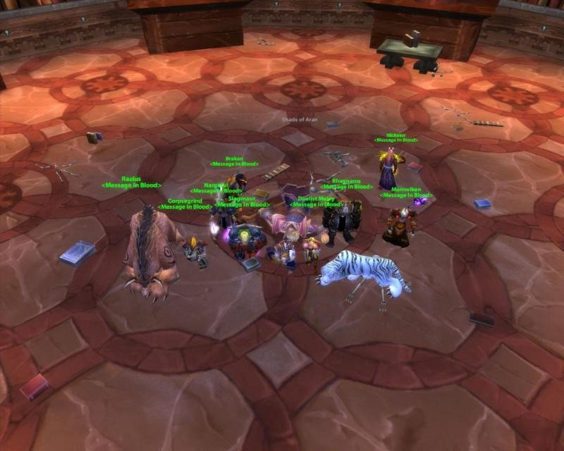 Some killshots of some bosses slain by the new raid grp Aran10