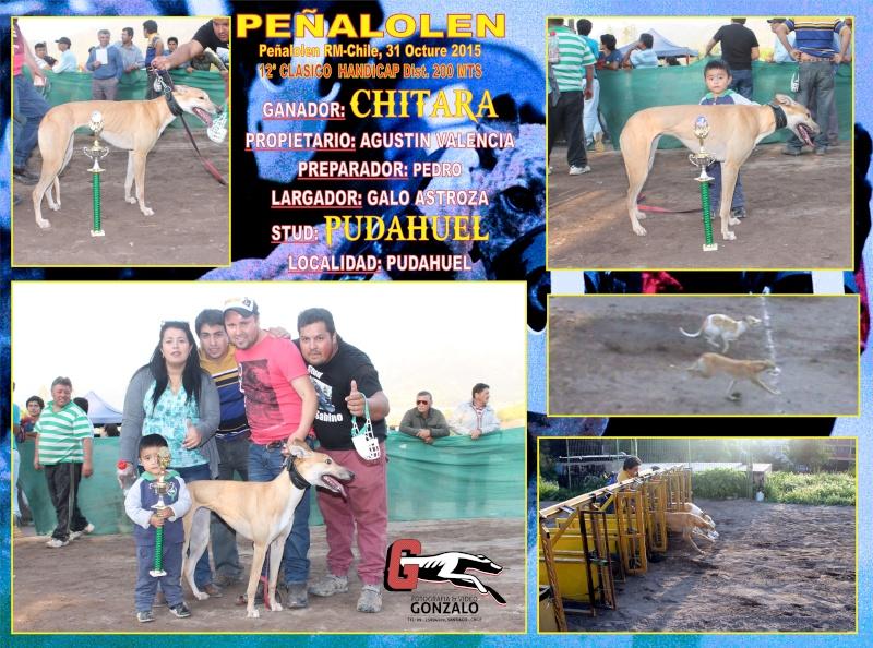 SABADO 31 OCTUBRE, GRANDES CLASICOS CANODROMO PEÑALOLEN. 12-cla13