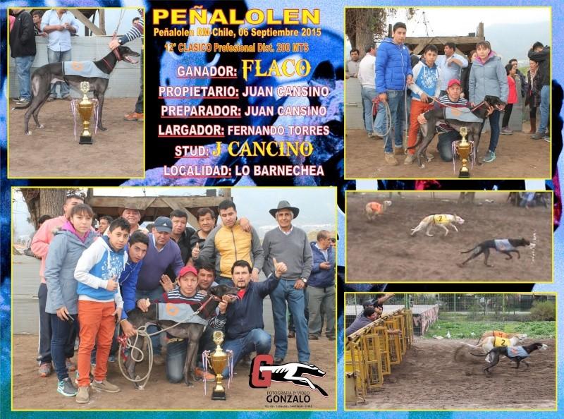 GRANDES CLASICOS PARA DOMINGO 06 DE SEPTIEMBRE EN CANODROMO PEÑALOLEN. 13-cla10