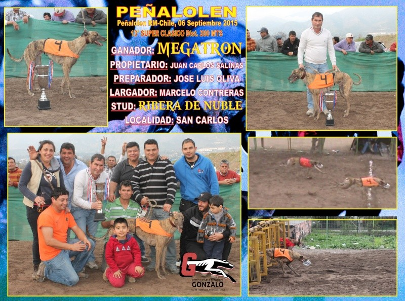 GRANDES CLASICOS PARA DOMINGO 06 DE SEPTIEMBRE EN CANODROMO PEÑALOLEN. 14-cla10