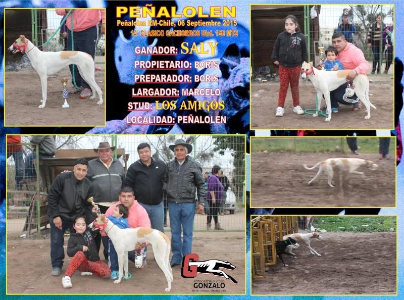 GRANDES CLASICOS PARA DOMINGO 06 DE SEPTIEMBRE EN CANODROMO PEÑALOLEN. 15-cla10