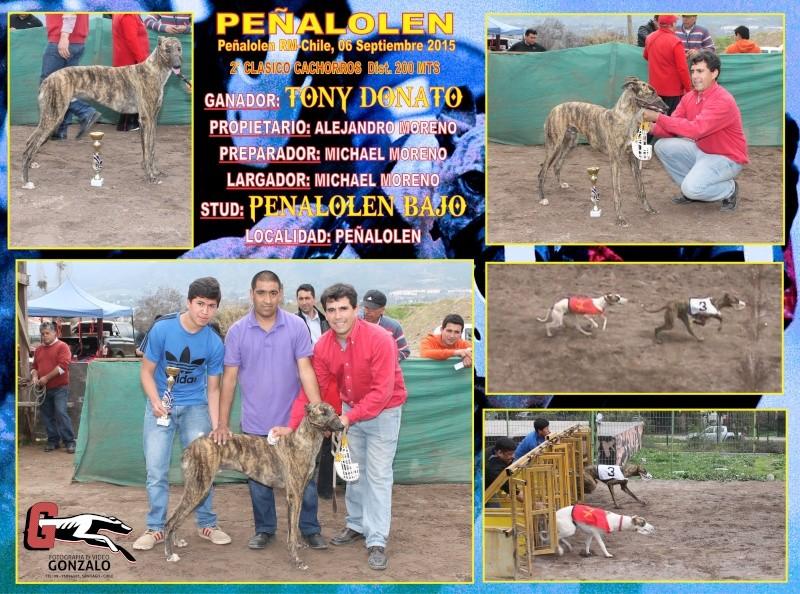 GRANDES CLASICOS PARA DOMINGO 06 DE SEPTIEMBRE EN CANODROMO PEÑALOLEN. 2-clas10