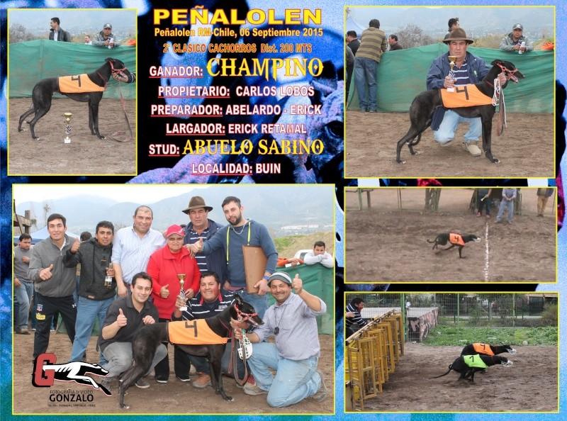 GRANDES CLASICOS PARA DOMINGO 06 DE SEPTIEMBRE EN CANODROMO PEÑALOLEN. 3-clas10