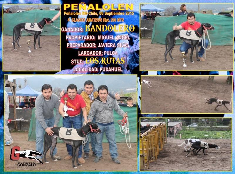 GRANDES CLASICOS PARA DOMINGO 06 DE SEPTIEMBRE EN CANODROMO PEÑALOLEN. 5-clas10