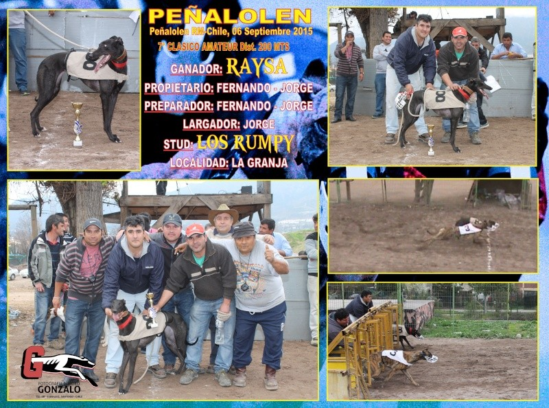 GRANDES CLASICOS PARA DOMINGO 06 DE SEPTIEMBRE EN CANODROMO PEÑALOLEN. 8-clas10