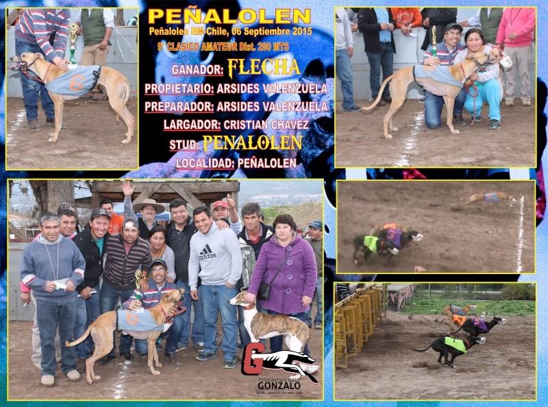 GRANDES CLASICOS PARA DOMINGO 06 DE SEPTIEMBRE EN CANODROMO PEÑALOLEN. 9-clas10