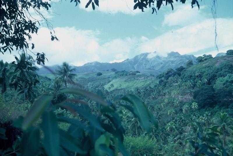 [Campagnes] Souvenirs de mon arrivée au camp d'Arué à Tahiti F1000014