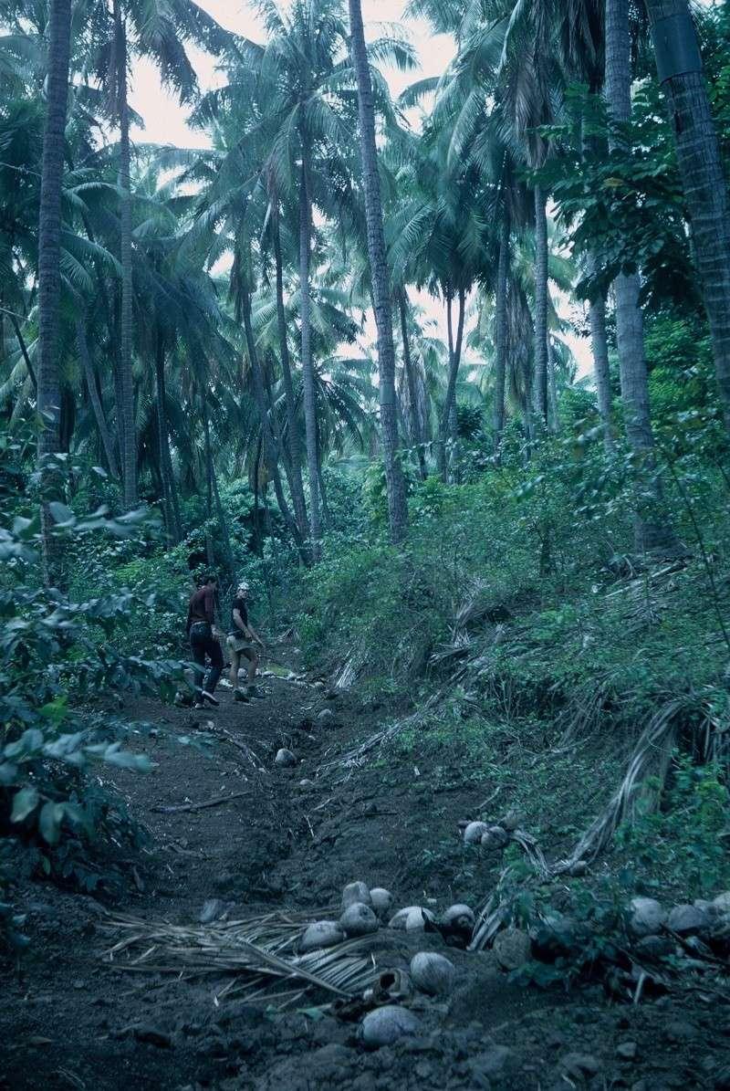 [Campagnes] Souvenirs de mon arrivée au camp d'Arué à Tahiti Rotati10