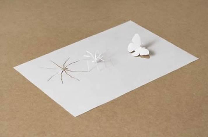 إبداعات ورقية ..رائعة جدا Image114