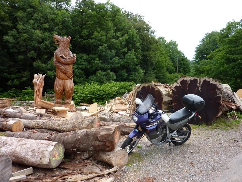 Vos plus belles photos de motos - Page 4 P1010512