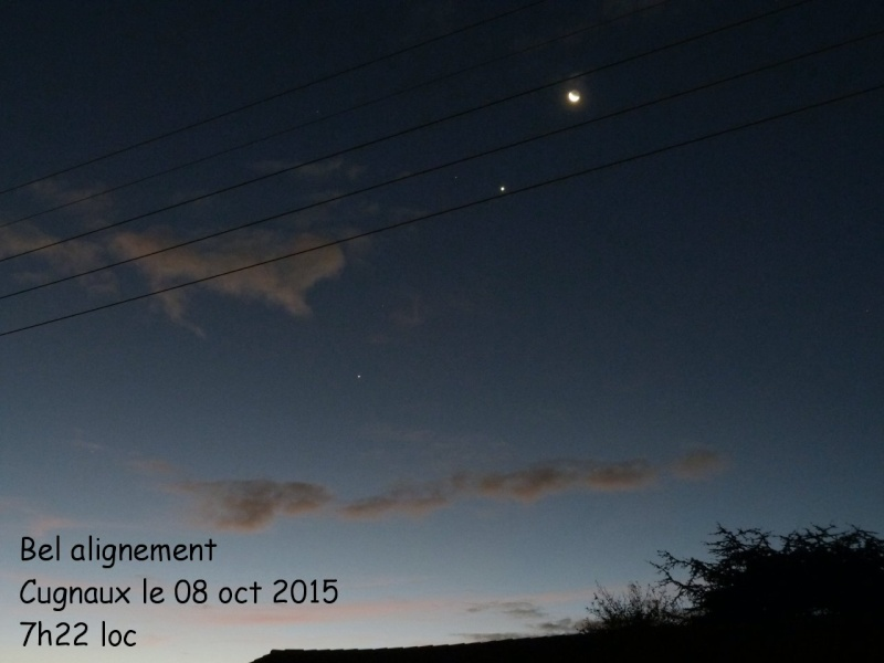 Lune et Venus au petit matin du 10/12/2012 P1020511