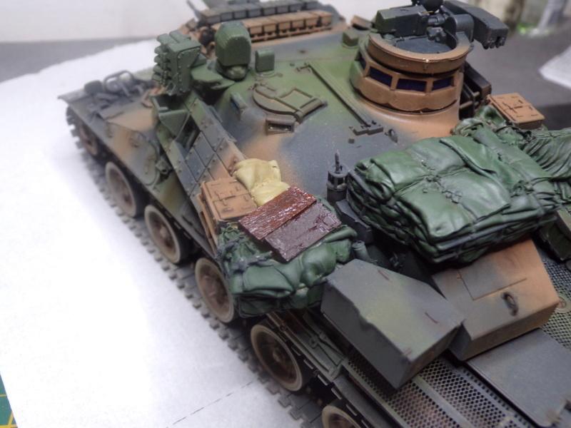 AMX 30  B2 BRENNUS Tiger Model 115_3521