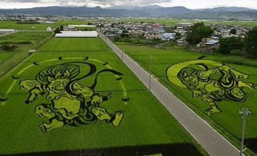 الزراعة في اليابان Image018