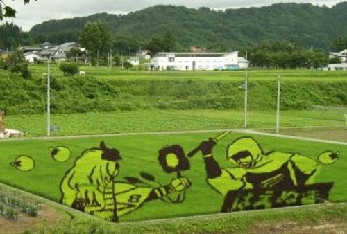 الزراعة في اليابان Image019
