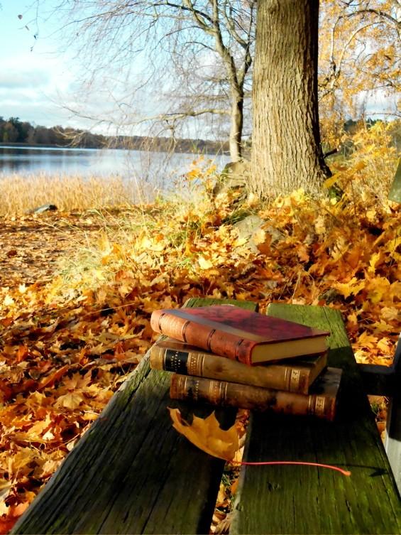 Nos lectures d'octobre 2015 A1144
