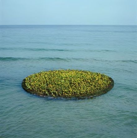 [Land Art] Andy Goldsworthy, Nils-Udo... [INDEX 1ER MESSAGE] - Page 5 A93