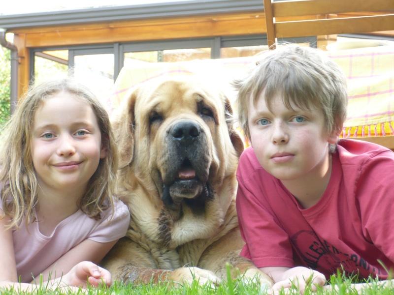 que du bonheur ce chien !!!!! P1070510