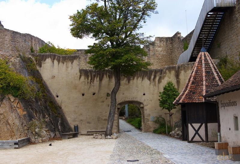 Les Châteaux d' Eguisheim ,  du Hagueneck , du Hohlandsbourg - Page 2 Hohlan13
