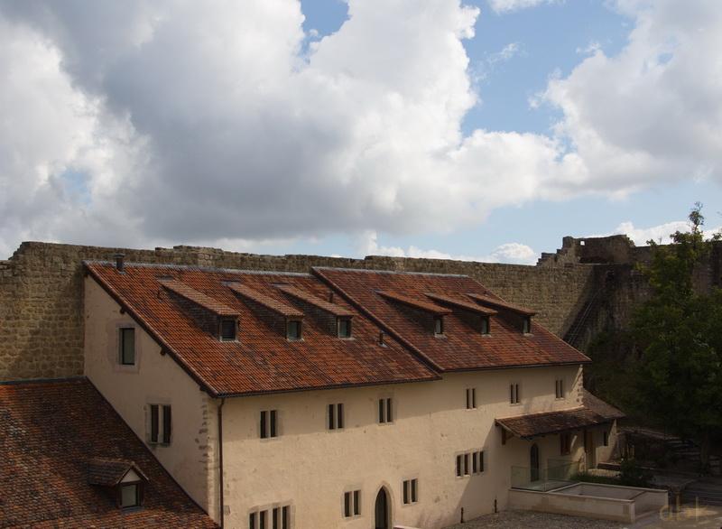 Les Châteaux d' Eguisheim ,  du Hagueneck , du Hohlandsbourg - Page 3 Hohlan34