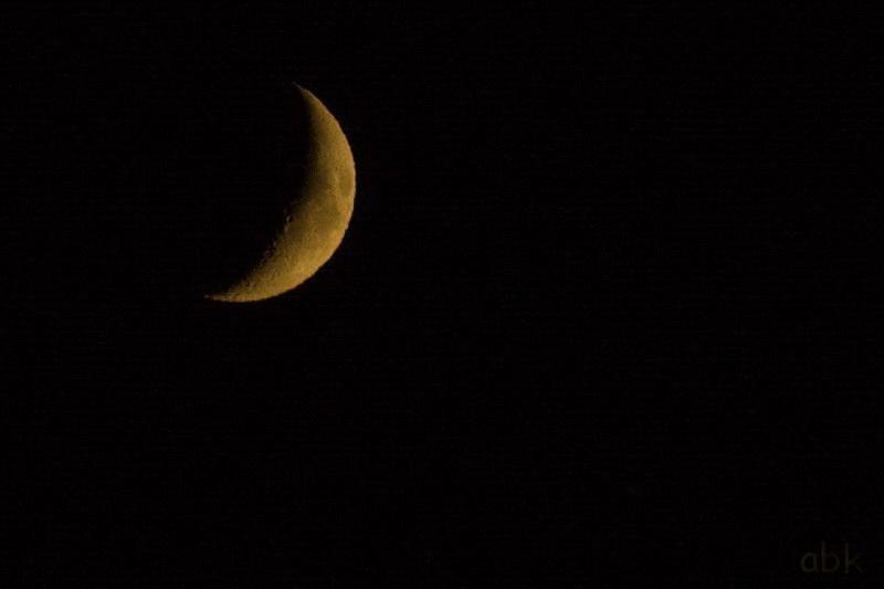 Lune Lune_110