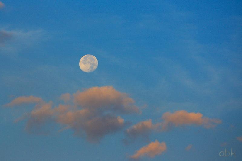 Lune Lune_310