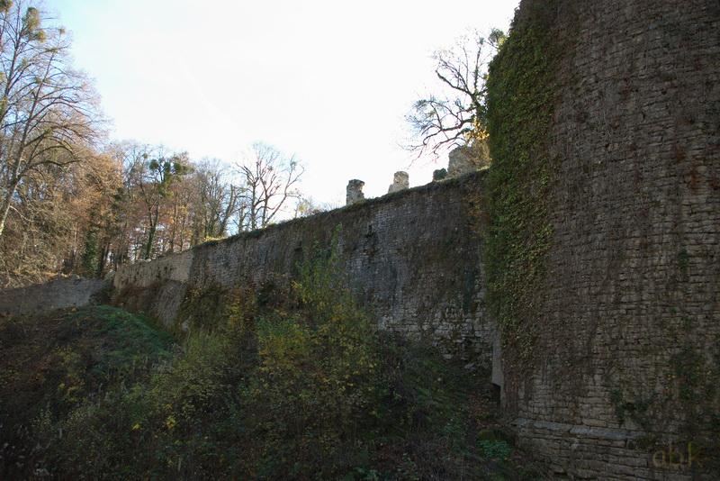 Oberlarg - Château de Morimont - Les Ebourbettes - Mannlefelsen Oberla13