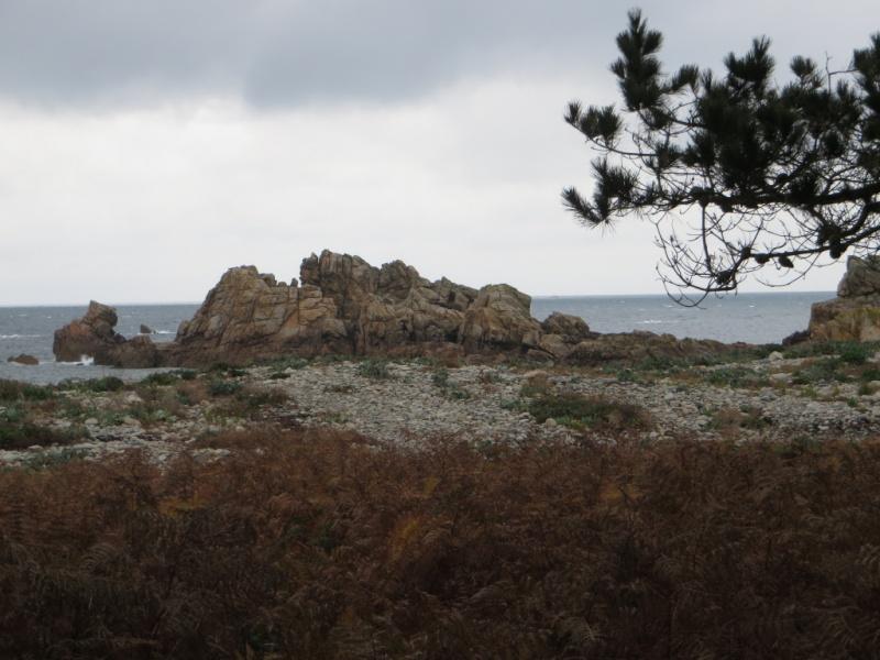 Bretagne : côte d'Armor fin Octobre 2015 G1img_10
