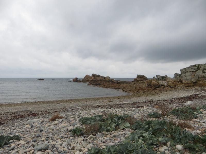 Bretagne : côte d'Armor fin Octobre 2015 G2img_10