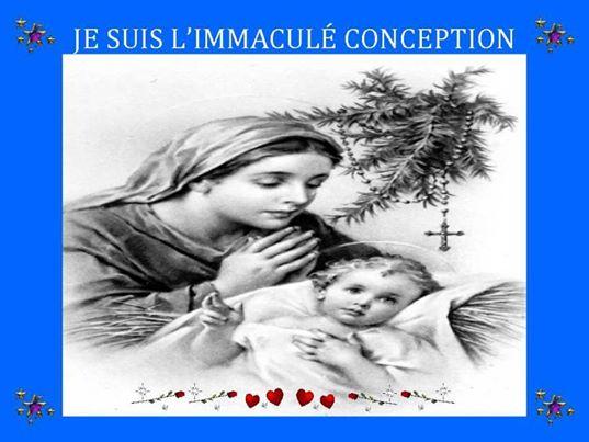 Fête de l'Immaculée Conception 2015 62351_10