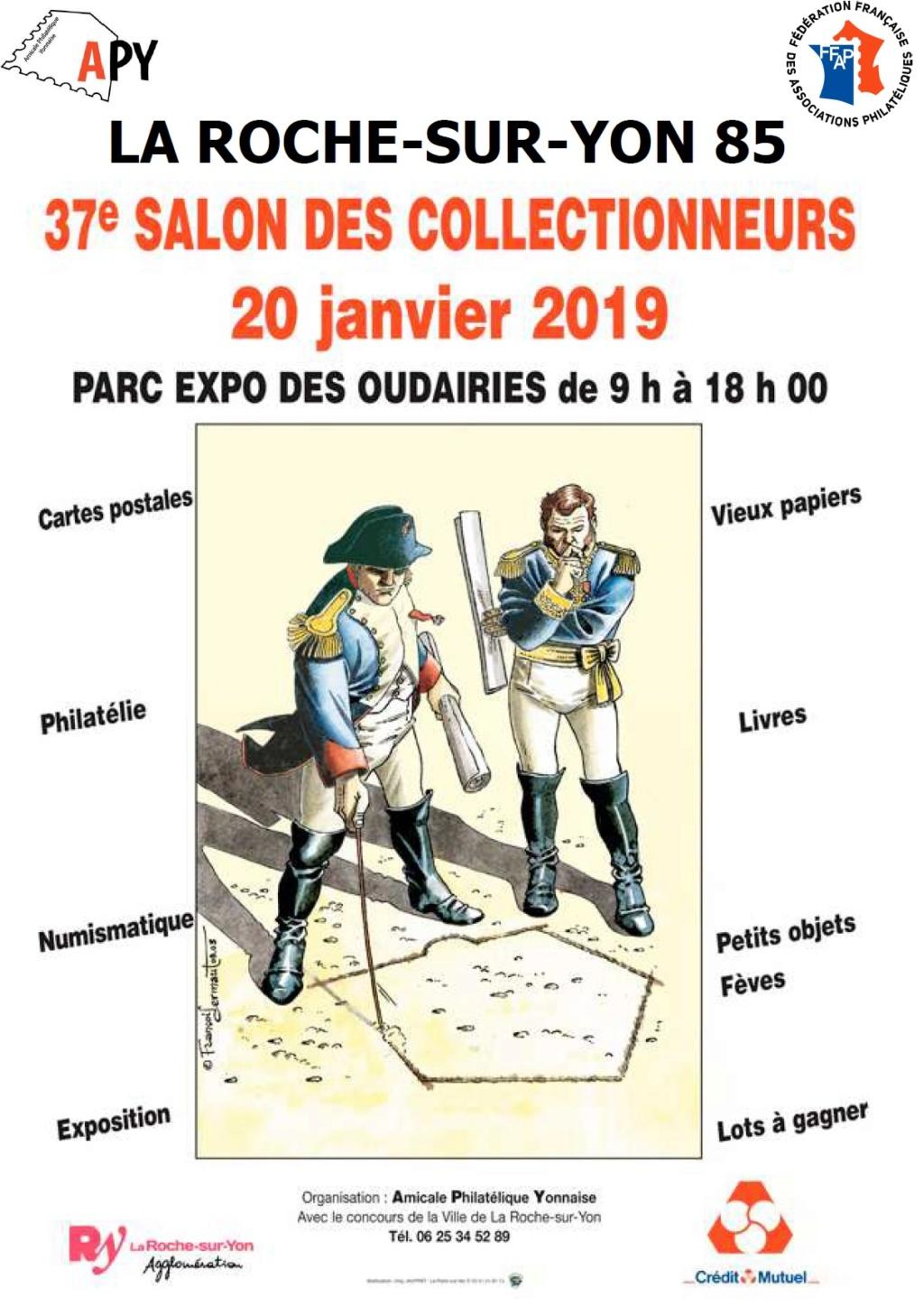 2019-01-20-85 La Roche-sur-Yon Apy8510