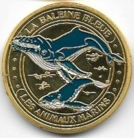 Mer et Océan - Animaux marins Balein17