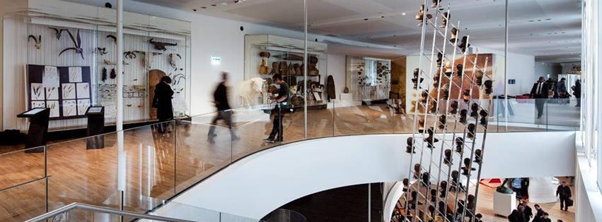 Musée de l'homme (75016) H10