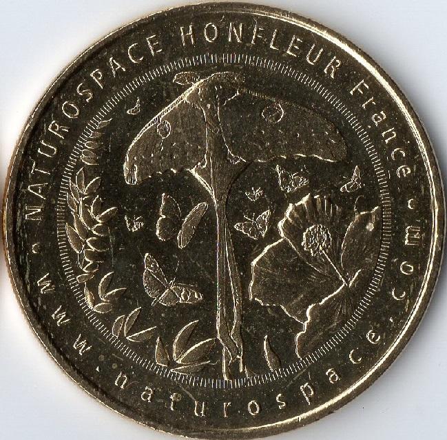 Honfleur (14600) [Naturospace] Img75310